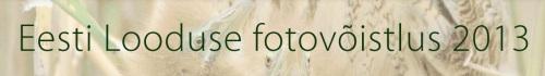 fotovoistlus