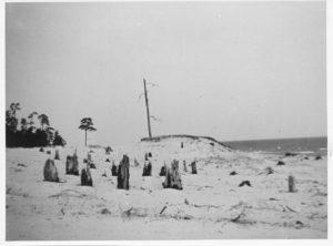 Limo luited Ruhnu rannas: silma hakkavad murdunud ja liiva alla mattunud puutüved. Pildi autor, John Lindström, oli 1937-1940 Ruhnus kirikuõpetaja, seega on foto tehtud tõenäoliselt tol ajal.