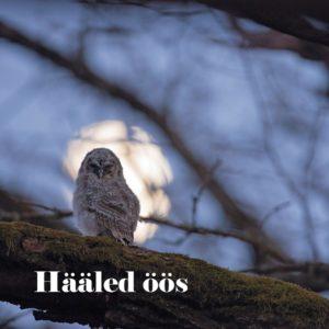 Hääled öös. Kaanefoto Ingmar Muusikus.