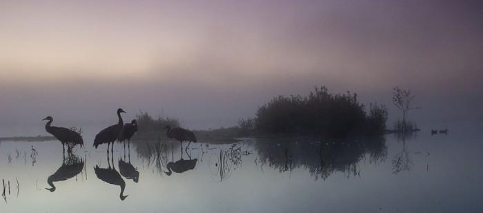 Eesti loodus- muuseum, Estonian Nature Tours - Jaak Sarv