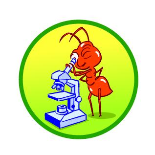 Mikroskoop - ikoon