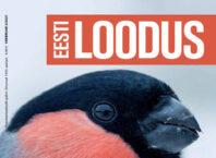 thumbnail of EL2_2021
